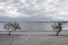 Supetar, ilha de Brac, Croácia Fotografia de Stock Royalty Free