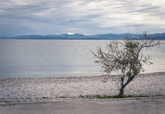 Supetar, ilha de Brac, Croácia Fotografia de Stock