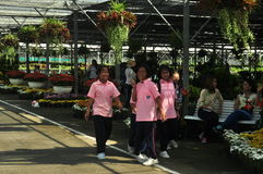 Suphan Buri, Thailand - November 19, 2015: Thailand Students visit the flower market on November 19, 2015 in Suphanburi, Thailand. Royalty Free Stock Photography