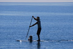 Man and dog on paddle boat stock images