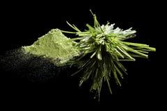 Suplementos ao alimento verde. Imagem de Stock Royalty Free
