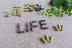 Suplementos para el concepto sano de la vida Imagen de archivo libre de regalías