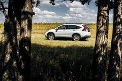 Suporte de Honda CR-V do carro na estrada do campo perto da floresta no dia Fotografia de Stock