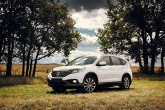 Suporte de Honda CR-V do carro na estrada do campo perto da floresta no dia Imagens de Stock Royalty Free