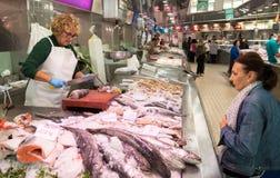 Suporte 4 dos peixes Fotografia de Stock