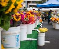 Suporte fresco do vendedor de flores do corte do mercado famoso dos fazendeiros de Hollywood Fotografia de Stock