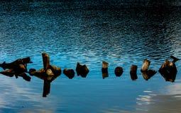 Suporte o fundo beautyful nacional da terra pequena de madeira do lago Imagens de Stock Royalty Free