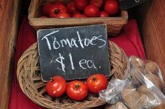 Suporte vegetal foto de stock