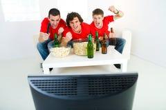 Suportes do futebol Imagem de Stock Royalty Free