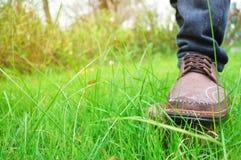 Suportes em um coto de árvore no sapatas marrons trekking no gramado verde Foto de Stock Royalty Free
