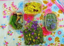 Suposición de la flor Todavía vida de flores y de plantas no comestibles hermosas en una bufanda colorida Imágenes de archivo libres de regalías