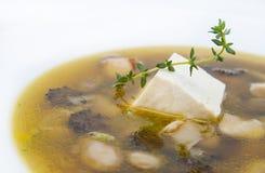 Suppe lizenzfreie stockfotografie