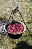 Suppe auf dem Feuer Lizenzfreie Stockfotos