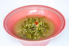 Suppe der Indischen Spinate, lizenzfreies stockfoto