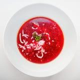 Suppe der roten Rübe stockbild