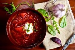 Suppe der roten Rübe Lizenzfreies Stockfoto