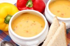 Suppe des Gemüses Stockfoto
