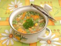 Suppe des Gemüses stockfotografie