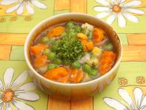 Suppe des Gemüses stockbild