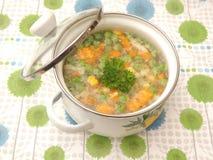 Suppe des Gemüses stockbilder