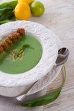 Suppe des wilden Knoblauchs Stockfotografie