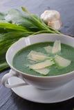 Suppe des wilden Knoblauchs mit Parmesankäse Lizenzfreie Stockfotos