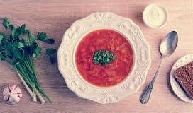 Suppe in einer Schüssel mit Dill, Sauerrahm und Schwarzbrot auf hölzernem b Lizenzfreies Stockbild