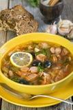 Suppe einiger Arten Fleisch Lizenzfreie Stockfotografie