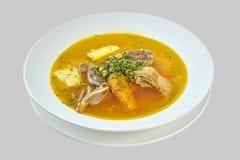 Suppe lokalisiert auf weißem Hintergrund Lizenzfreie Stockfotos