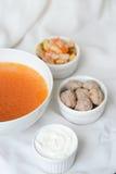Suppe mit Bestandteilen Stockbilder