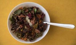 Suppe mit Blättern vieler Farben Lizenzfreie Stockbilder