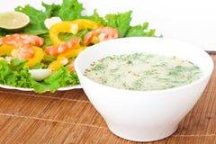 Suppe mit einem Salat Lizenzfreie Stockbilder