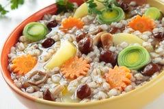 Suppe mit Gerste, Pilze Lizenzfreie Stockfotografie