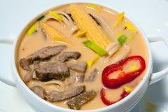 Suppe mit Gewürzen 1 Lizenzfreie Stockfotos