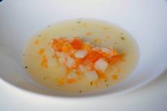 Suppe mit Karotten, Pilzen und Sauerrahm Lizenzfreie Stockfotos