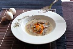 Suppe mit Karotten, Pilzen und Sauerrahm Stockbild