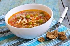 Suppe mit kleinen Teigwaren, Gemüse und Stücken Fleisch Stockfotos