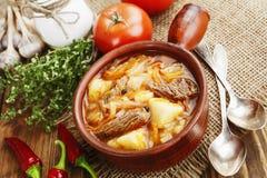 Suppe mit Kohl und Fleisch Stockfotos