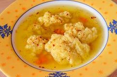 Suppe mit Mehlklößen Lizenzfreie Stockfotos