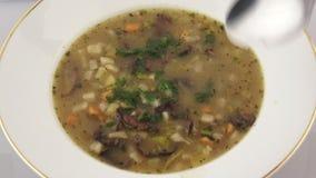 Suppe mit Pilzen stock video