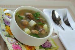 Suppe mit Pilzen Stockfotografie
