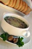 Suppe mit Pilzen in einer Schüssel mit einem Saucer Lizenzfreies Stockfoto