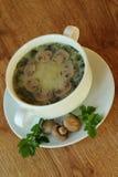 Suppe mit Pilzen und Petersilie Lizenzfreies Stockfoto