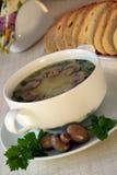 Suppe mit Pilzen und Petersilie in einer Schüssel Lizenzfreie Stockfotos