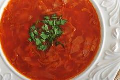 Suppe mit roten Rüben und Kohl und grüne Petersilie Stockfotografie