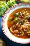 Suppe mit vielem Gemüse Lizenzfreies Stockfoto