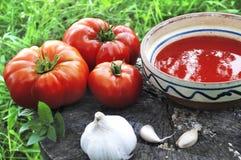 Suppe und Gemüse Lizenzfreies Stockfoto