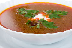 Suppe von der roten Rübe mit saurer Sahne stockfotografie