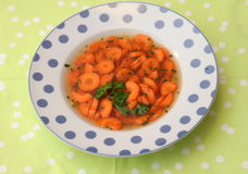 Suppe von Karotten Lizenzfreies Stockbild