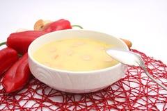 Suppe von Kartoffeln Lizenzfreie Stockbilder